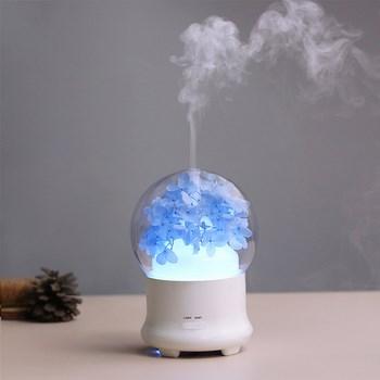 Đèn tinh dầu tạo độ ẩm