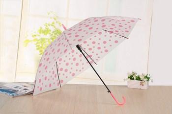 Cây dù che mưa hình chấm bi
