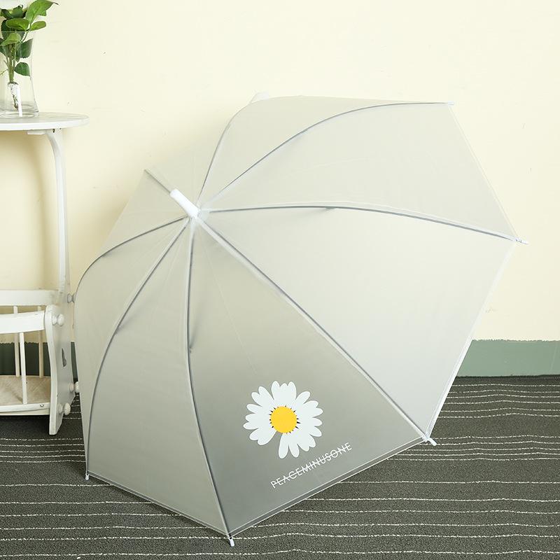 Cây dù che mưa hình hoa cúc hoa mi