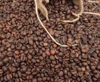 Cà phê hạt rang robusta xuất xứ Gia Lai - Loại 1Kg