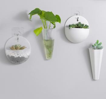 Chậu nhựa trồng cây treo tường trong nhà (4 mẫu)